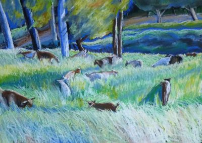 Goats in the Grass 2016 50 x 40cm