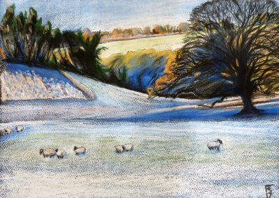 JANUARY FROST CHAGFORD 2017 50 X 40CM