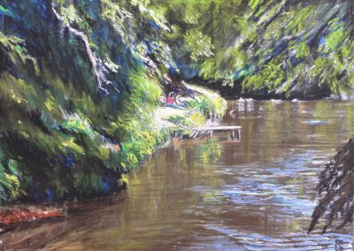 PICNIC AT THE SALMON LEAP 2017 50 X 40CM
